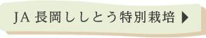 JA長岡ししとう特別栽培
